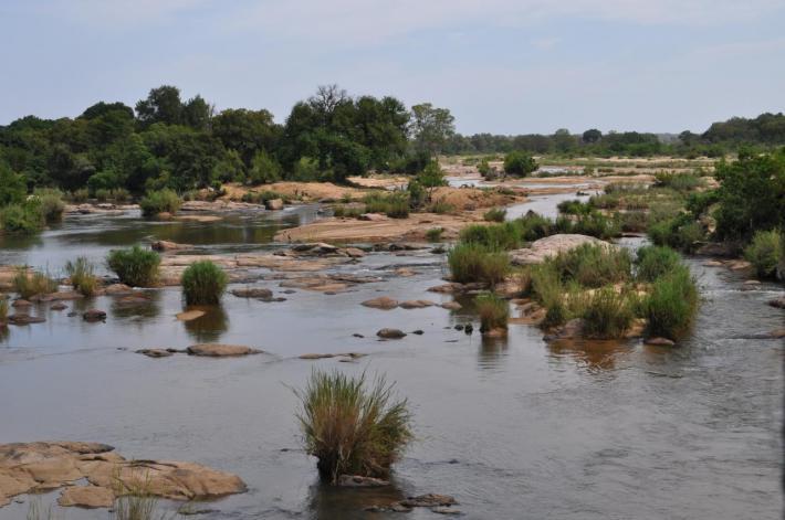 La rivière Kruger