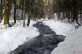 L'Albarine en hiver