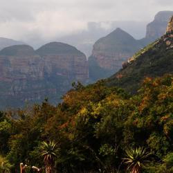 Montagne du Drakensberg (dans les nuages)