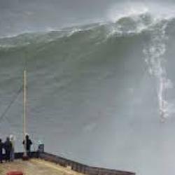 La joie des surfeurs